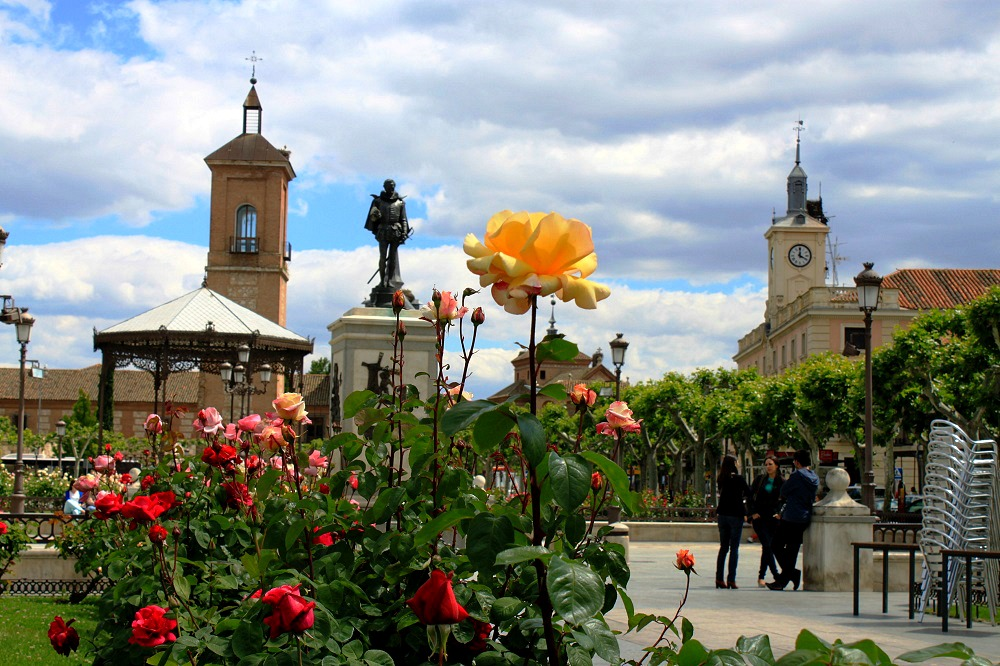 Madrid day trips alcala de henares spain attractions for Toldos alcala de henares
