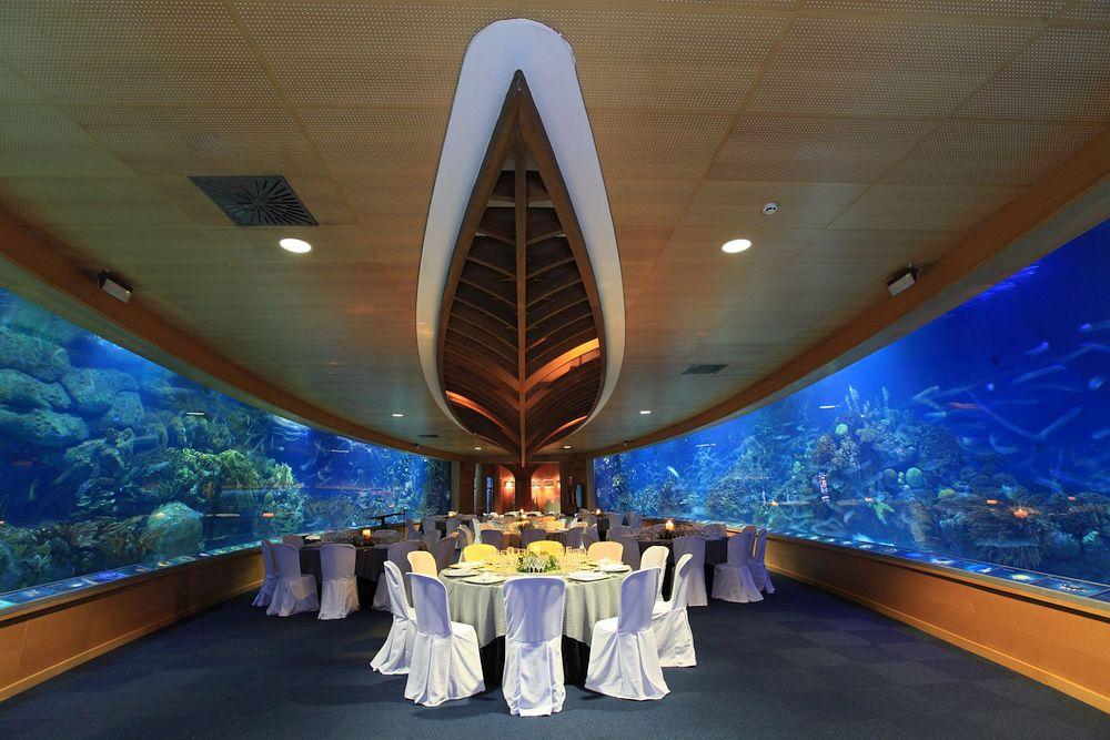 Underwater Restaurant in Valencia