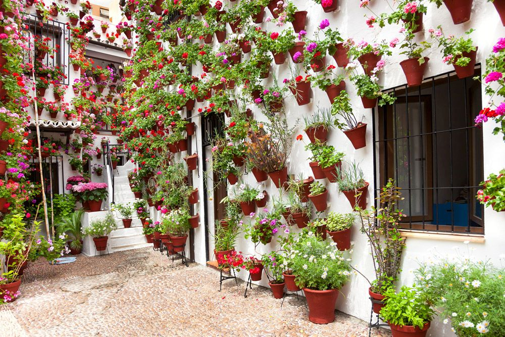 Courtyard with flowers in Cordoba