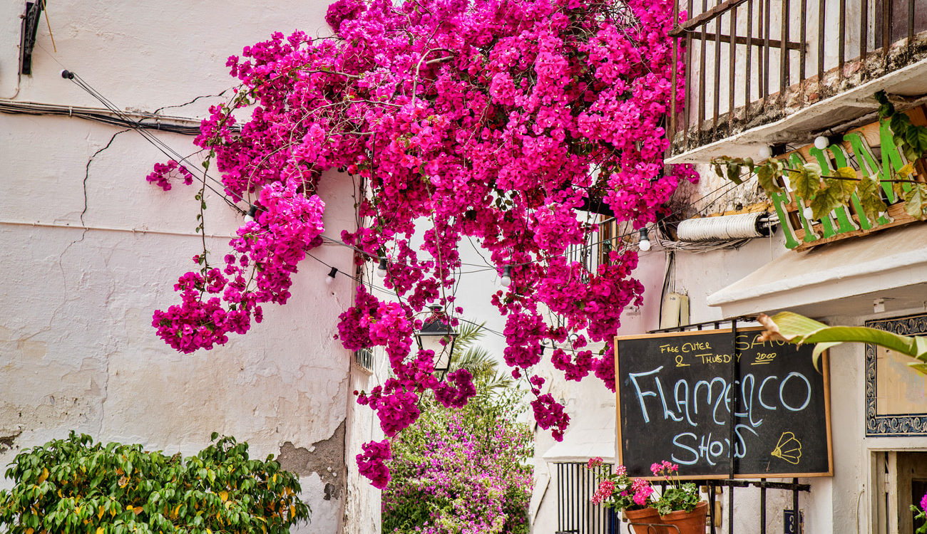 Marbella, Most Beautiful Town in Andalusia
