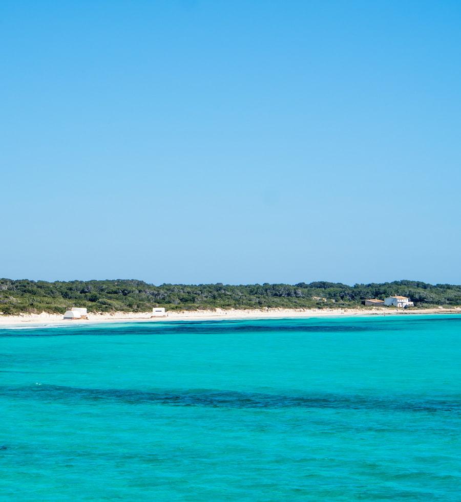Natural beach in Mallorca